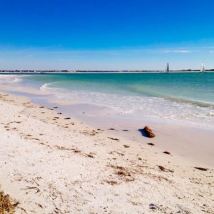 Best Places to Live on the Gulf Coast of Florida Dunedin